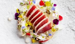 the-darling-sokyo-tile-tuna-tataki